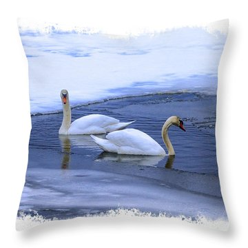 Swans Find Open Water Throw Pillow by Constantine Gregory
