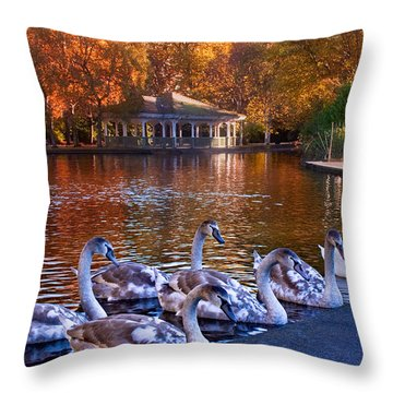 Swans In Stephen's Green / Dublin Throw Pillow