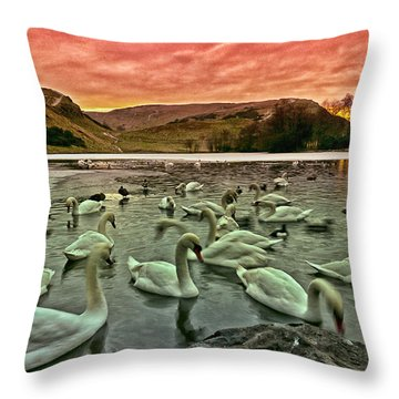 Swans In The Loch Throw Pillow by Jean-Noel Nicolas