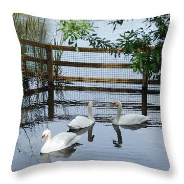 Swans In The Pond Throw Pillow by Beverly Stapleton