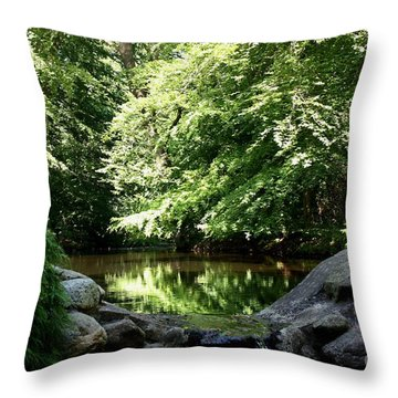Swedish Forestlake Throw Pillow