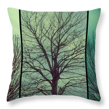 Throw Pillow featuring the photograph Sweep The Sky by Patricia Strand