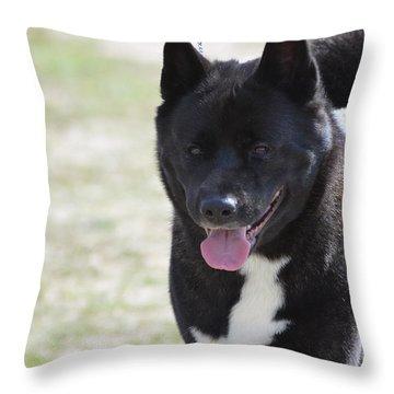 Sweet Akita Dog Throw Pillow by DejaVu Designs