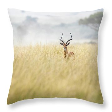 Masai Mara Throw Pillows