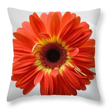 Throw Pillow featuring the photograph Sweet And Simple by Melanie Moraga