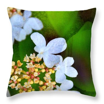 Throw Pillow featuring the photograph Sweet And Sour by Darla Wood