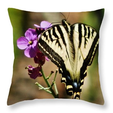 Sweet Attraction Throw Pillow by VLee Watson
