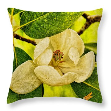 Sweet Bay Magnolia After The Rain Throw Pillow by Lois Bryan