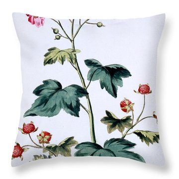 Sweet Canada Raspberry Throw Pillow