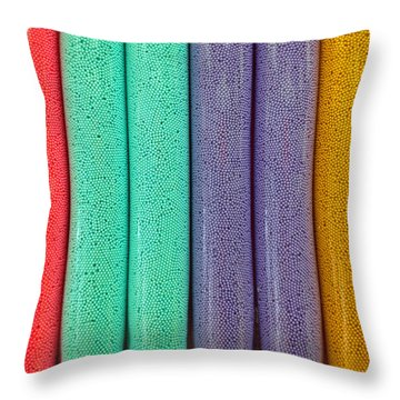 Sweet Colors Throw Pillow
