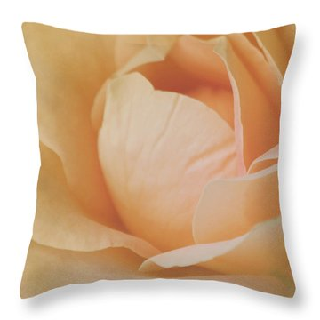 Sweet Divine Mercy Throw Pillow