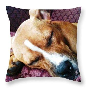 Sweet Dreams Throw Pillow by Debbie Finley