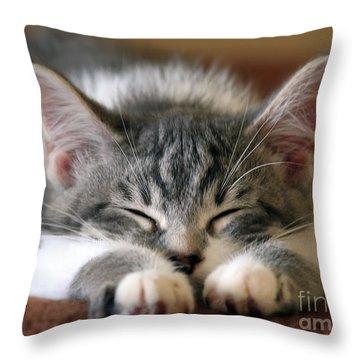 Sweet Dreams Throw Pillow by Teresa Zieba