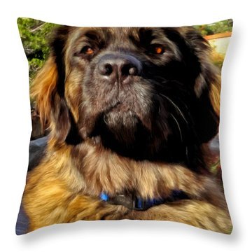 Sweet Emmy Throw Pillow