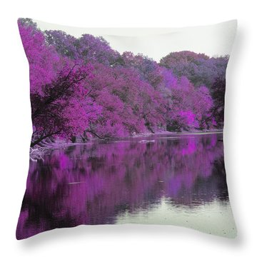 Sweet Fall Reflections Throw Pillow