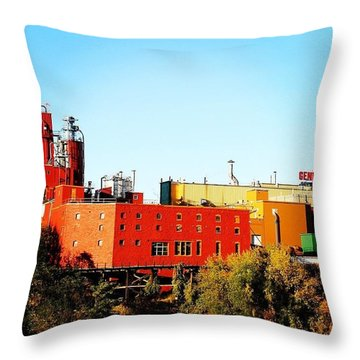 Sweet Genny Throw Pillow