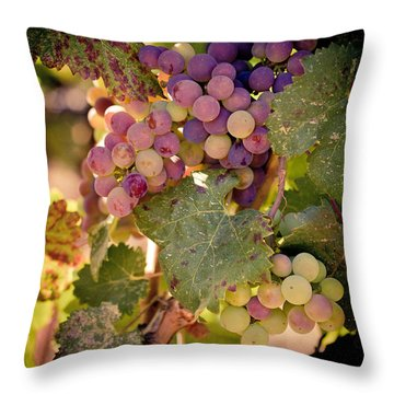 Sweet Grapes Throw Pillow
