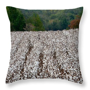 Throw Pillow featuring the photograph Sweet Home Alabama by Linda Mishler