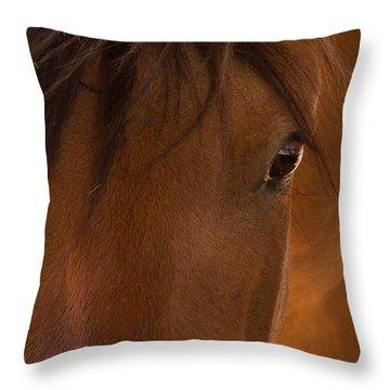 Sweet Horse Face Throw Pillow