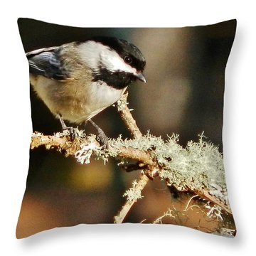 Sweet Little Chickadee Throw Pillow
