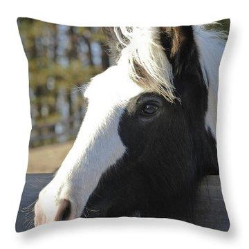 Sweet Miss Emma Throw Pillow