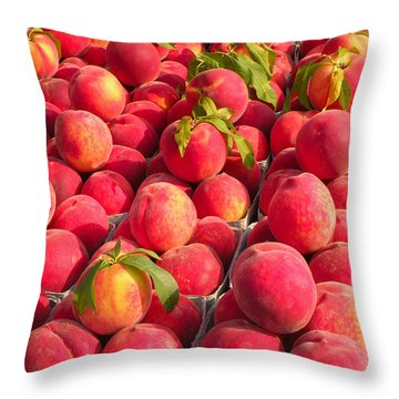 Sweet Nectar Throw Pillow by Kim Bemis
