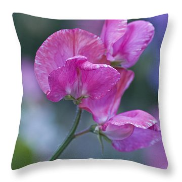 Sweet Pea In Pink Throw Pillow