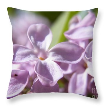 Throw Pillow featuring the photograph Sweet Scent Of Spring by Agnieszka Ledwon