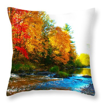 Sweet Serenity Throw Pillow