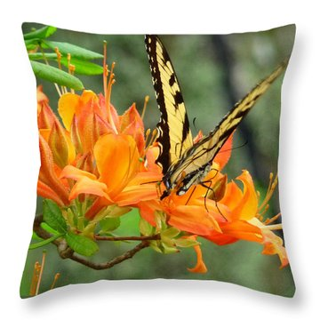 Sweet Spot Throw Pillow by Jim Whalen