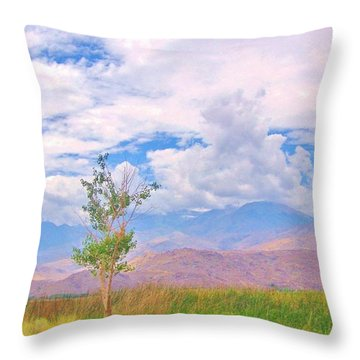 Throw Pillow featuring the photograph Sweet Summertime by Marilyn Diaz