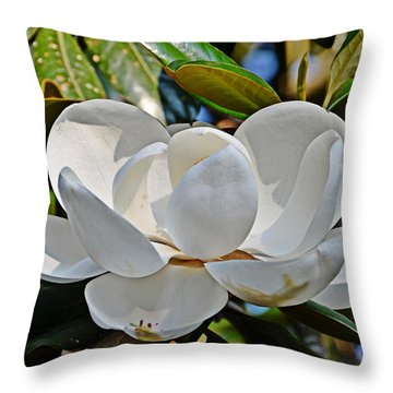 Throw Pillow featuring the photograph Sweet Sunny South by Linda Brown