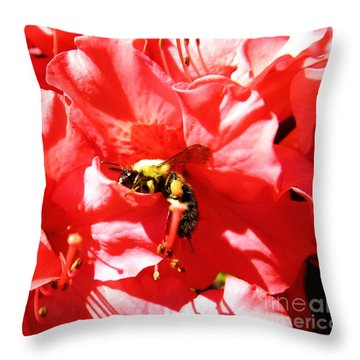 Throw Pillow featuring the photograph Sweet Surrender by Robyn King