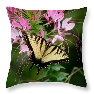 Sweet Swallowtail Throw Pillow