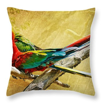 Sweet Sweet Love Throw Pillow