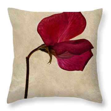 Sweet Textures Throw Pillow by John Edwards