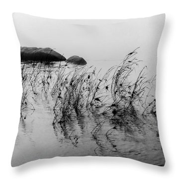 Sweet Water Throw Pillow