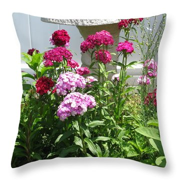 Throw Pillow featuring the photograph Sweet William Flowers by Margaret Newcomb
