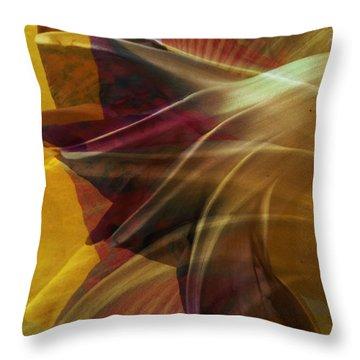 Swept Throw Pillow by Dorian Hill