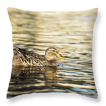 Swimming At Sunset Throw Pillow by Scott Pellegrin