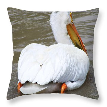 Swimming Away Throw Pillow by Alyce Taylor