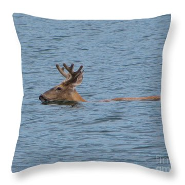 Swimming Deer Throw Pillow by Leone Lund
