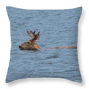 Swimming Deer Throw Pillow