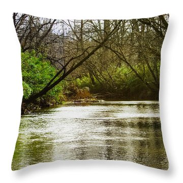 Swimming Hole 2 Throw Pillow