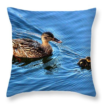 Throw Pillow featuring the photograph Swimming Lesson  by Judy Palkimas
