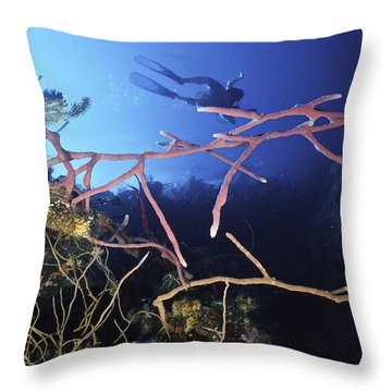 Swimming Over The Edge Throw Pillow