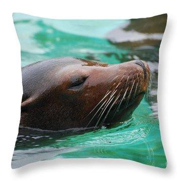 Swimming Sea Lion Throw Pillow by DejaVu Designs