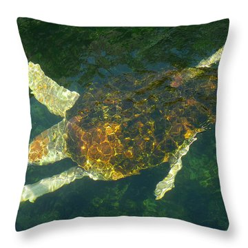 Swimming Turtle Throw Pillow