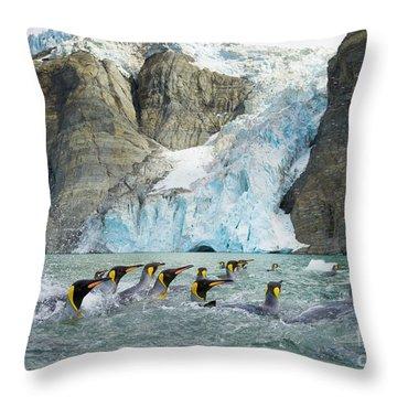 Swimmings King Penguins And Glacier Throw Pillow by Yva Momatiuk John Eastcott