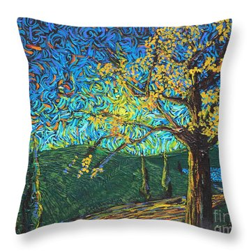 Swing By The Road Throw Pillow